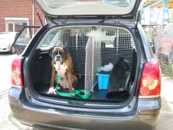 Car Boot Dog Guard Divider